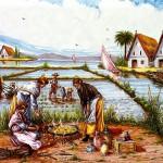 La bible de la paella - Paelleras qui cuisinent dans la Albufera